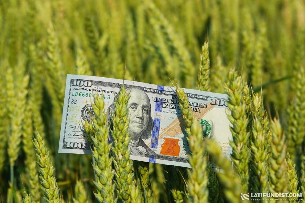 Аргентина продала 250к новой пшеницы сегодня, а в целом — 600к за неделю