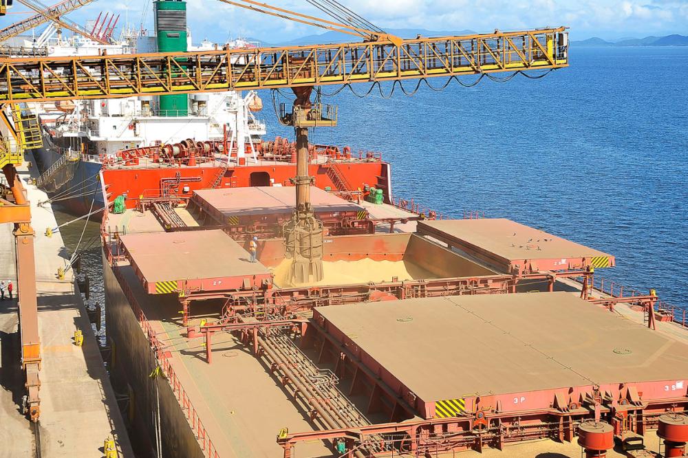 Отгрузка зерна в порту