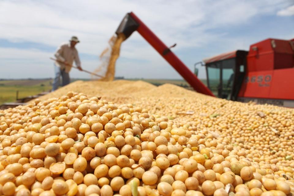 Китай, якобы, купит 10 млн т сои
