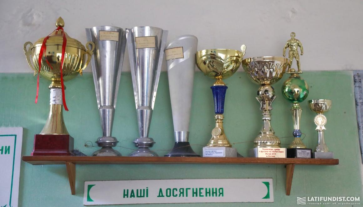 В Володьковой Дивыце есть 5 взрослых футбольных команд местного уровня и 2 сборные