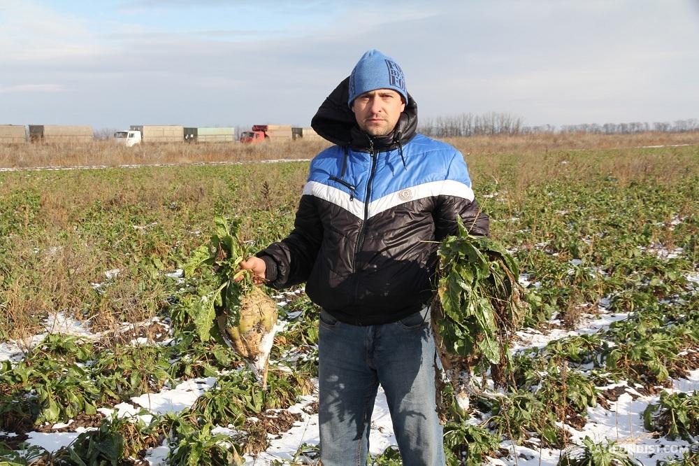 Александр Кучай, главный агроном «Деметра-Агро»