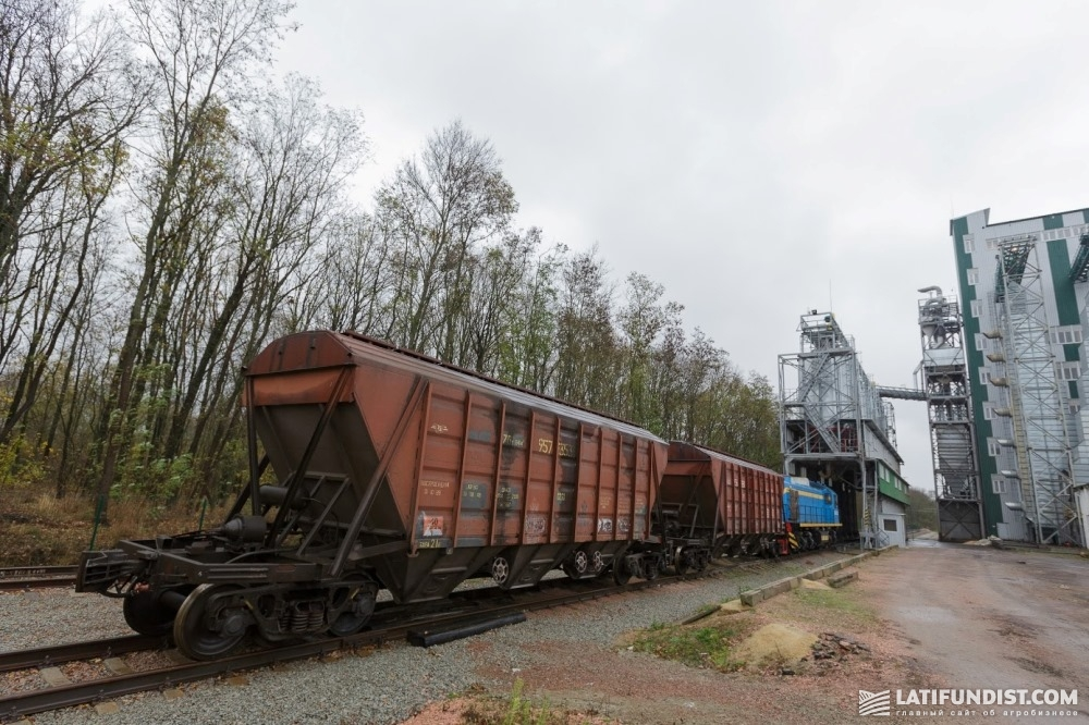 Основная масса участников зернового рынка добросовестно вносила свои планы по отгрузке и вместо запланированных 5-10 вагонов, получала 1-2 вагона