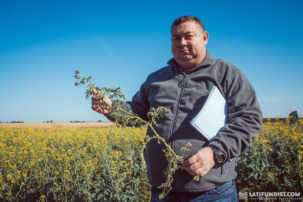 Аркадий Лунгул, руководитель Научно-исследовательского отдела «Кернел»