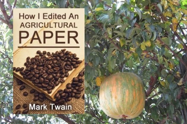 Как я редактировал сельскохозяйственную газету
