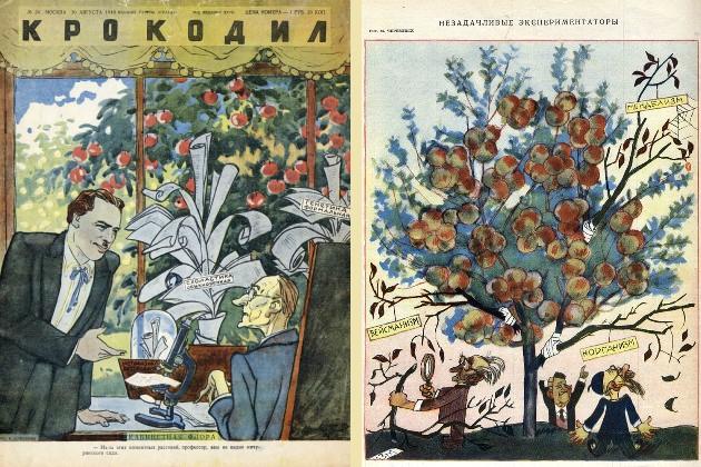 Карикатуры 1948 года, высмеивающие генетику и генетиков