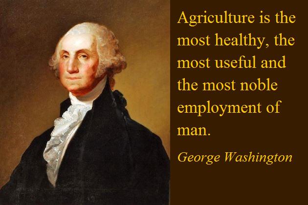 Утверждают, что очень большая часть афоризмов, приписываемых великим людям, им не принадлежит. Но Вашингтон вполне мог это сказать...