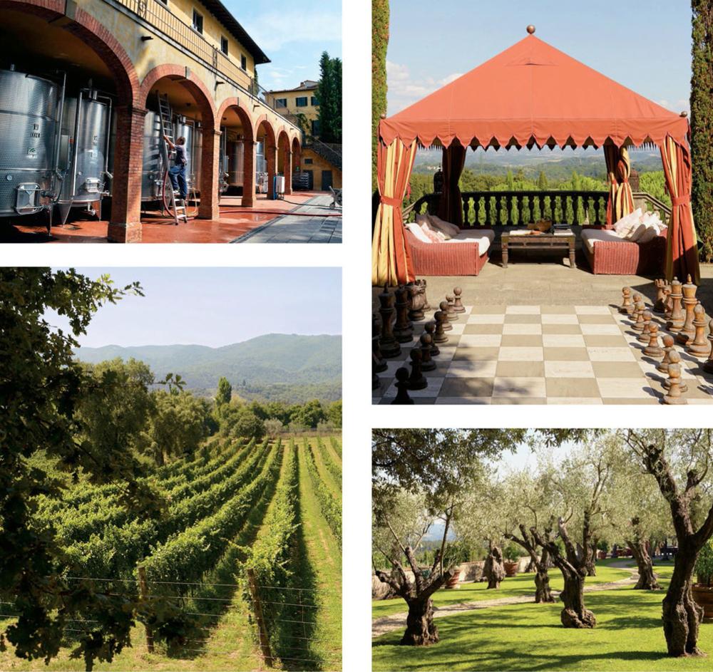 По часовой стрелке сверху слева: из нержавеющей стали танки на винодельни; вилла и гигантская шахматная доска; оливковая роща на территории; виноградники