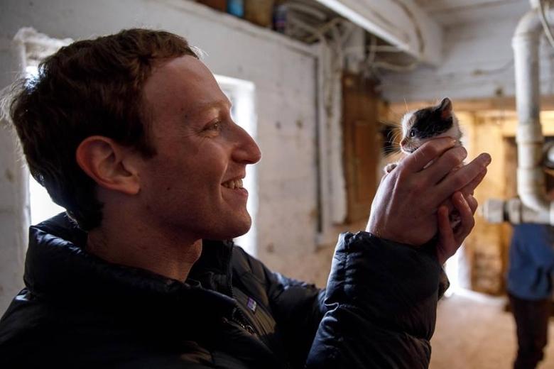 Подписчиков Марка заинтересовало, не забрал ли он домой двухнедельного котенка