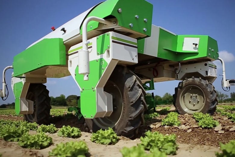 Сельскохозяйственный робот-пропольщик Dino