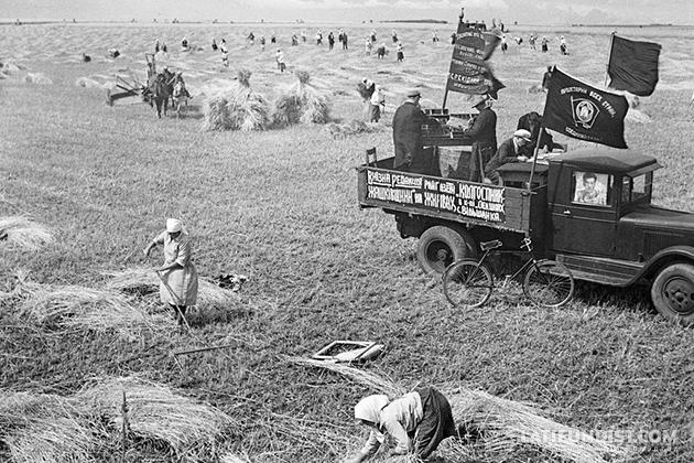 Душа радуется, правда? 18 августа 1933 года, уборочная в колхозе имени Ленина Жашковского района по версии советских журналистов той поры