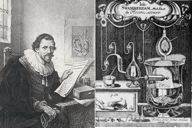 Портрет Яна Сваммердама и фронтиспис его Tractatus physico-anatomico-medicus de respiratione usuque pulmonum