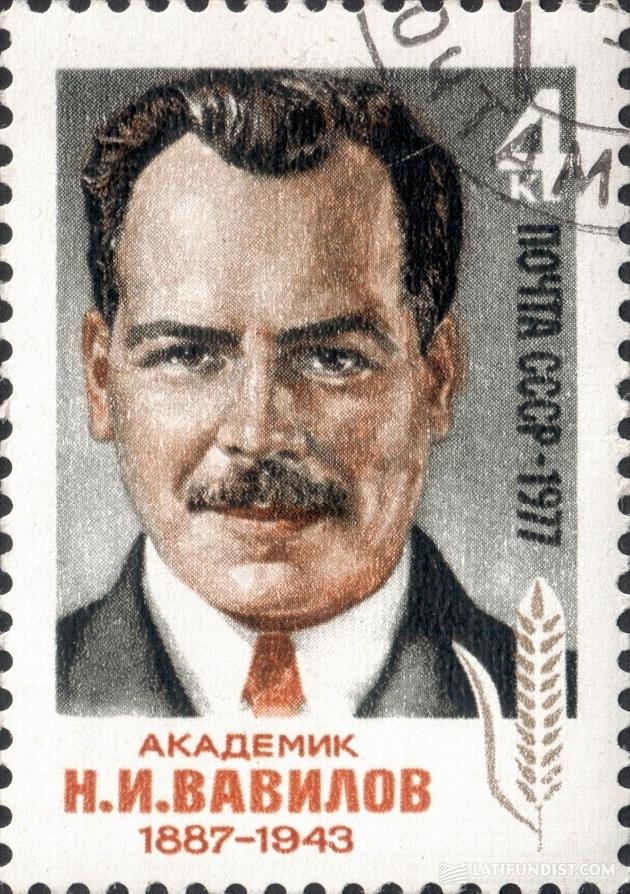Советская марка, посвященная памяти Н. Вавилова