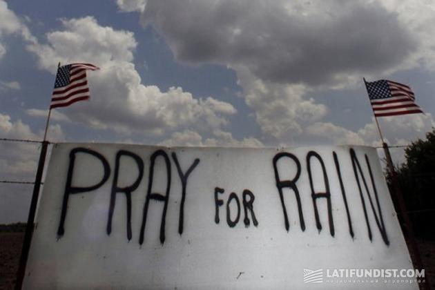 Молитесь о дожде…