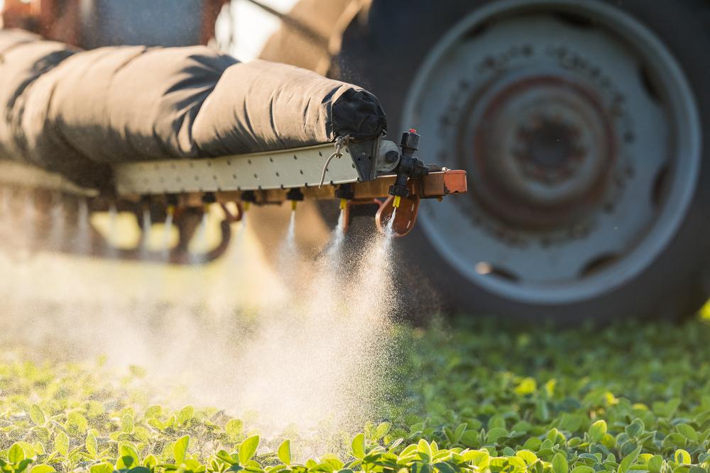 Уже не первый год наше хозяйство для защиты выращиваемых культур применяет пестициды и биопрепараты отечественного производства