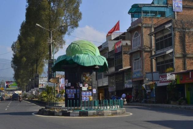 Памятник капусте в городе Берастаги (Индонезия)