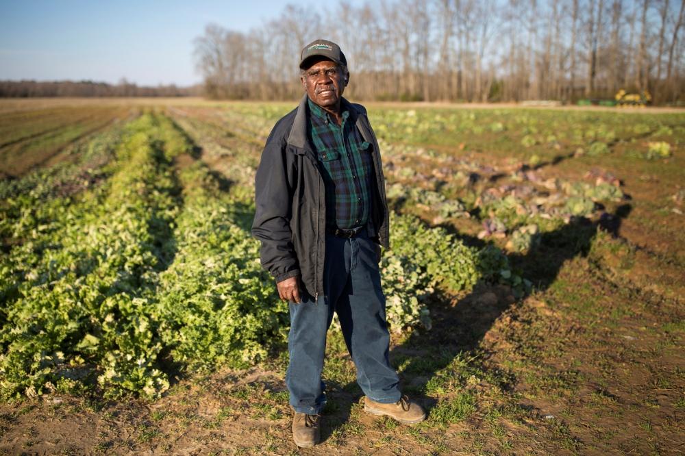 Темнокожий фермер в США
