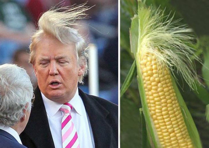 Рождение прозвища Corn Head