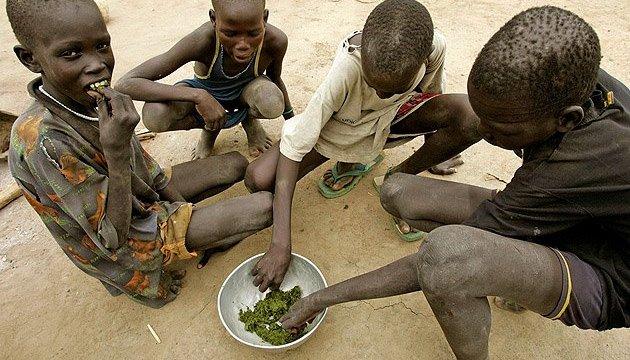 Около 800 млн человек все так же страдают от голода