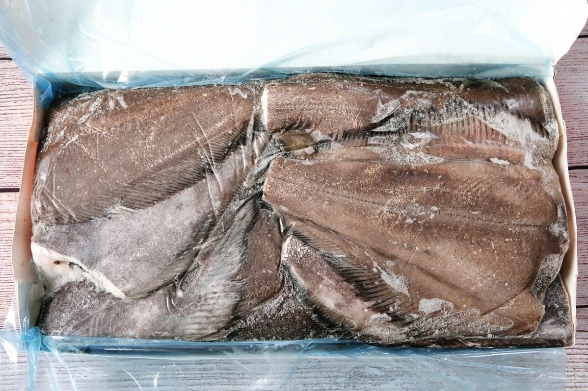 Гренландский палтус