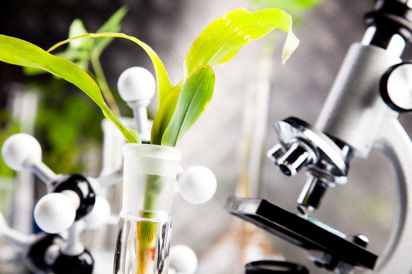Инновации украинского АПК касаются как отрасли в целом, так и конкретно средств защиты растений
