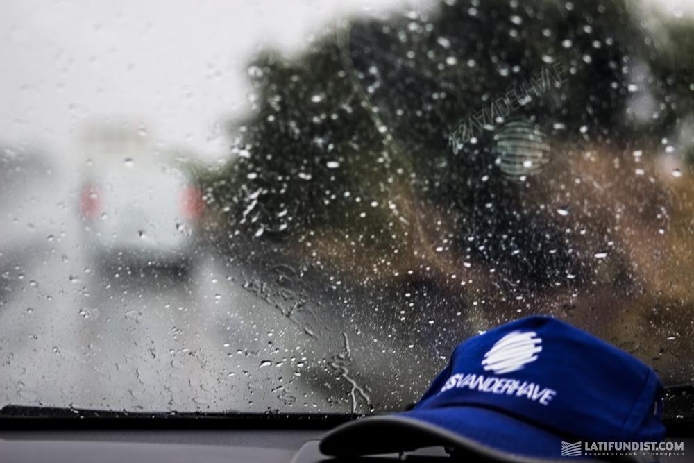 Дождливая встреча Одессы