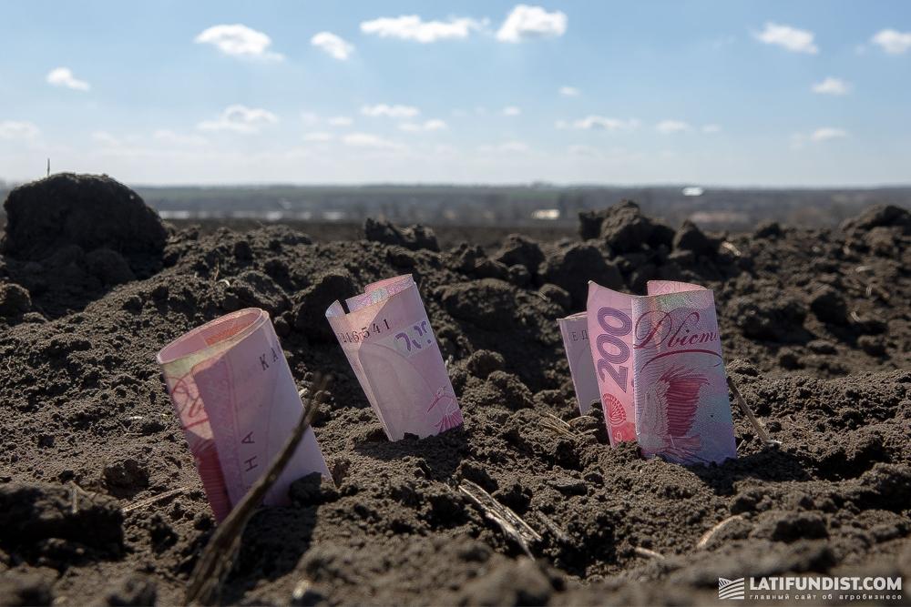 Финансовая устойчивость и финансовое равновесие - главный залог успеха агрокомпании