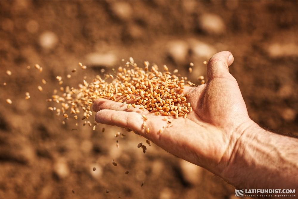 Мы с вами прекрасно знаем этот ТОП-15 «тяжеловесов» многострадального зернового рынка