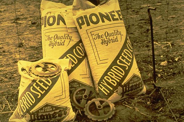 Семена компании Pioneer Hi-Bred International