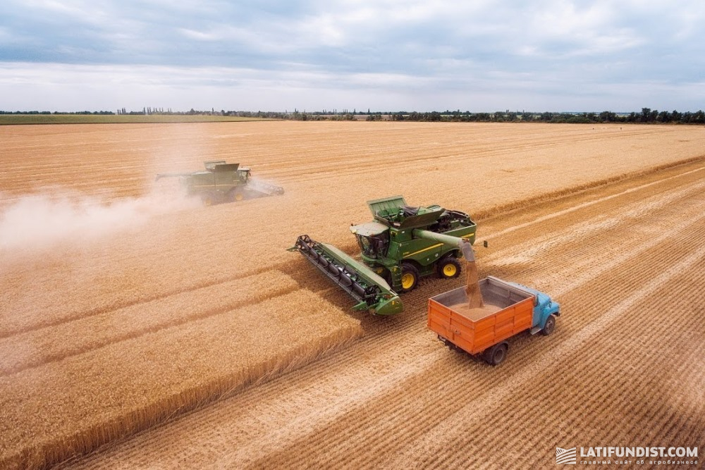 Wheat harvesting in Ukraine