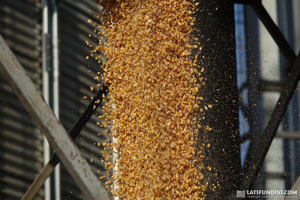 Отгрузка кукурузы
