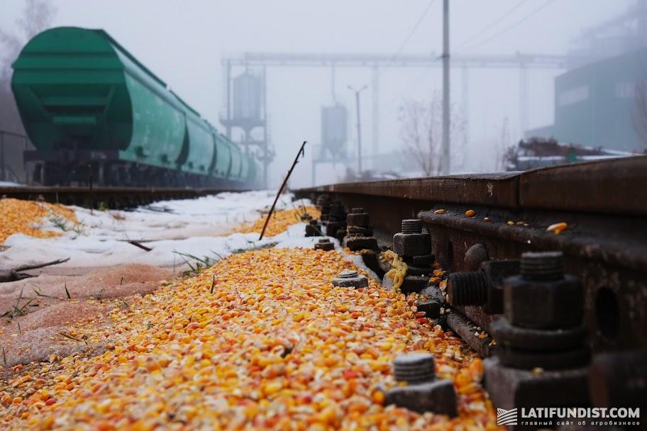 Украинское зерно последние пять лет теряет свою конкурентоспособность