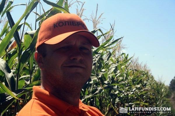 Виталий Каламбет, агроном-консультант компании KWS по Полтавской области
