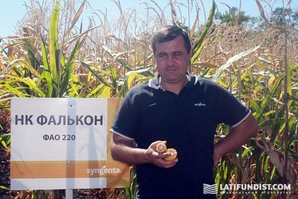 Евгений Андриенко, менеджер по продажам в Полтавской области фирмы «Сингента»