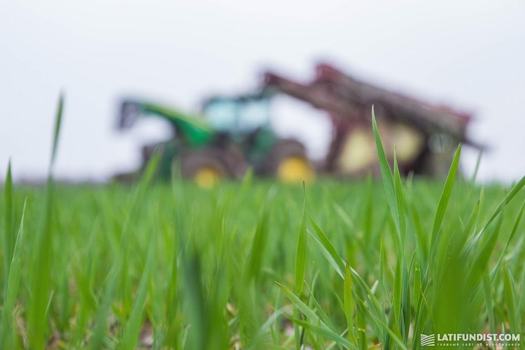 Растениеводство — это некая формула фотосинтеза, когда из ничего образуется органическое вещество