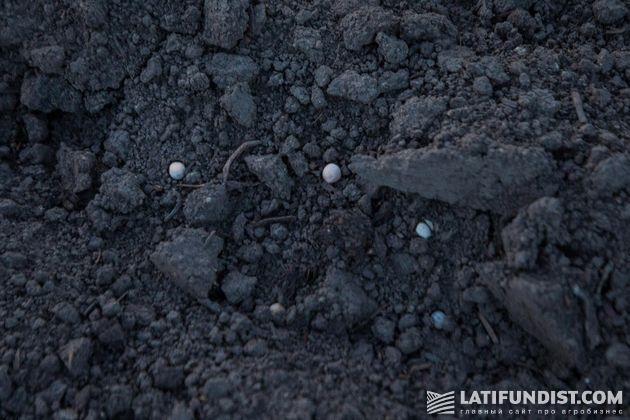 Удобрения на почве