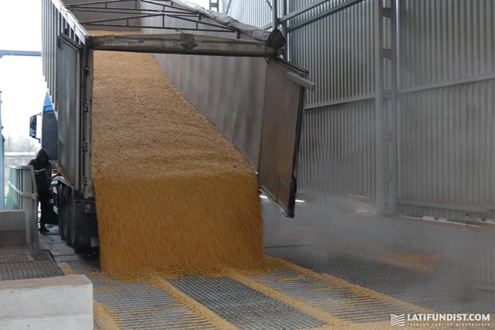 Приемка зерна на элеваторе