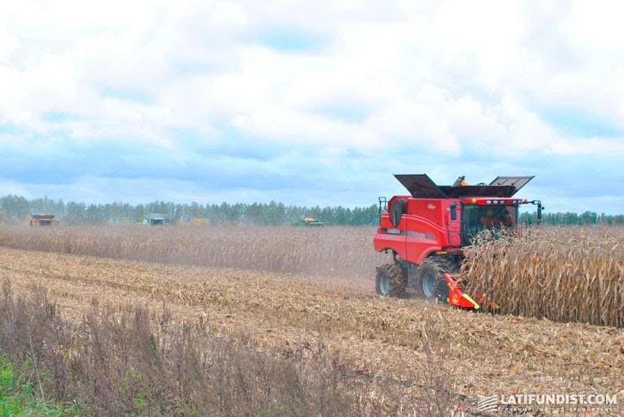 Компания «РОСТОК-ХОЛДИНГ» старается максимально повысить отдачу с одного гектара