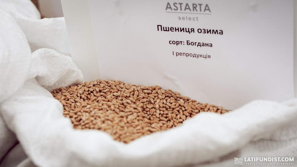 Семена озимой пшеницы Astarta Select