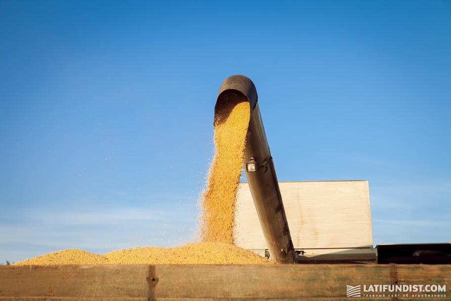Погрузка зерна