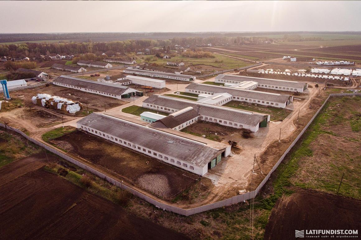 Территория предприятия «Зернопродукт МХП»