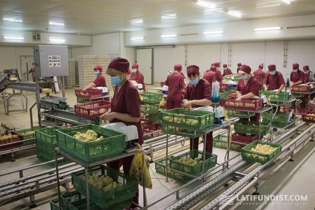 Компания «Мироновский хлебопродукт»