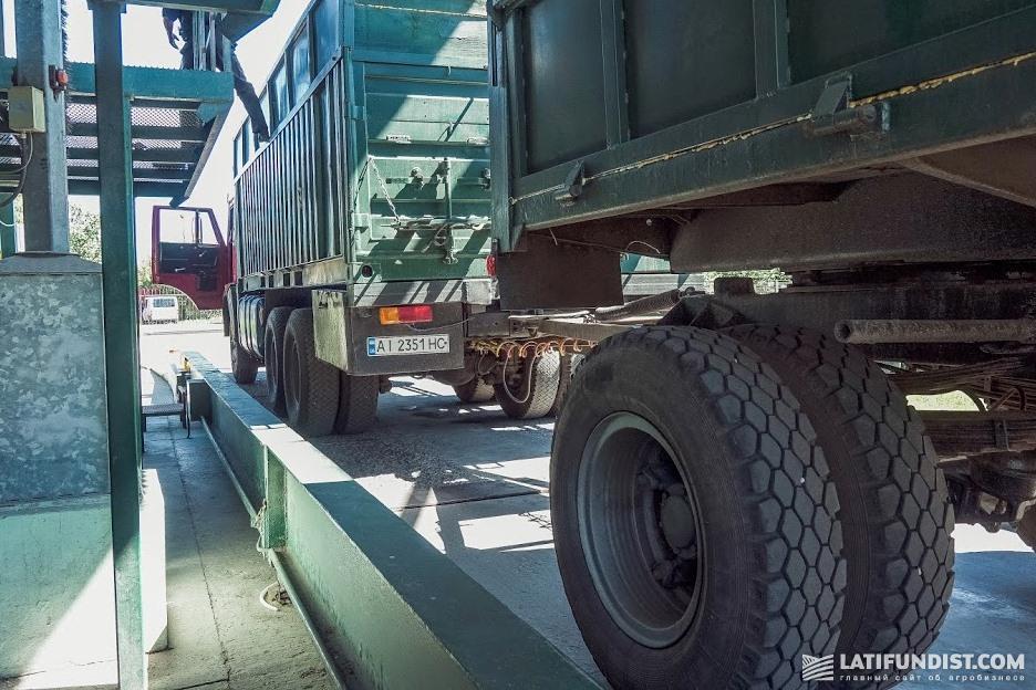 Grain trucks at the Elevator Agro facility