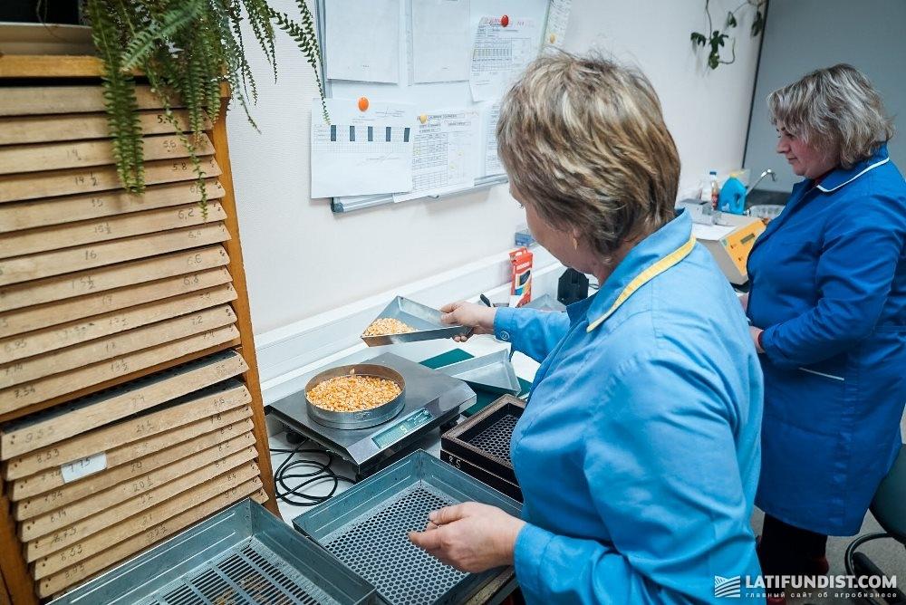 В лаборатории завода «Евралис Семенс Украина»