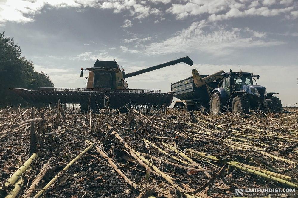 Уборка урожая на поле компании «АгроКИМ»