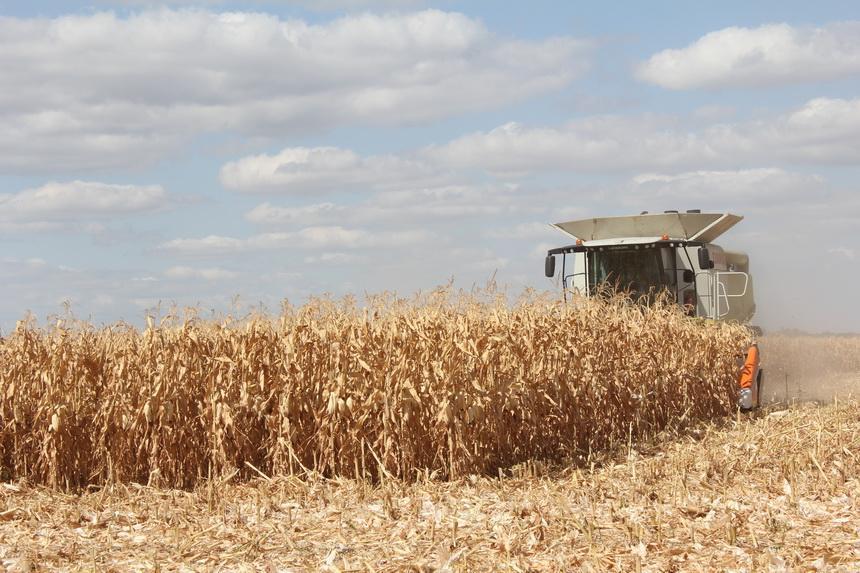 Уборка урожая в «УкрАгроКоме»