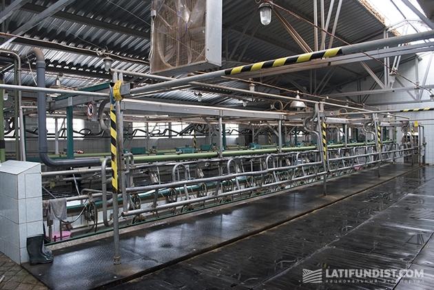 Молочный зал фирмы «Вестфалия»