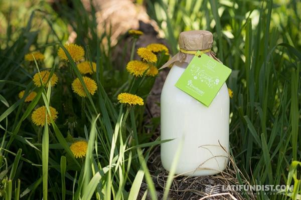 ЭтноПродукт: органика — это жизнь!