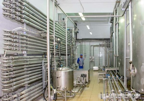 Завод яичных продуктов