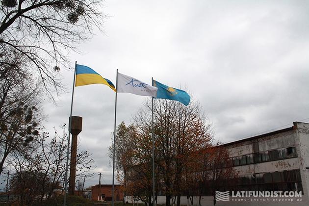 Международный холдинг Kusto Group