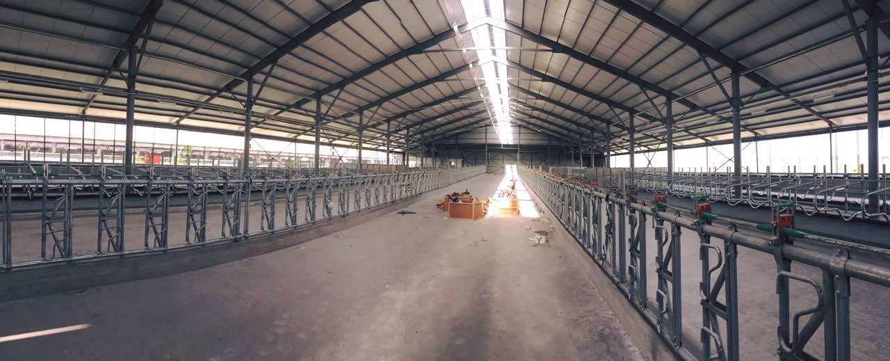 Вариант Агро Строй закончил монтаж оборудования на Глобинском мясомолочном комплексе